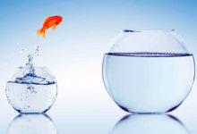 Личностный и профессиональный рост продавца