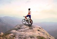 Что лежит в основе мотивации?